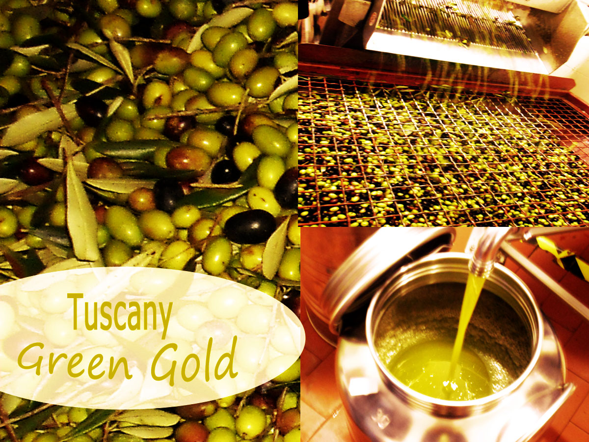 olive oil tuscany