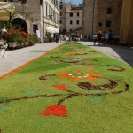 Pitigliano covered in Flowers, infiorata & more
