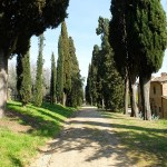 7 Areas of Tuscany That Deserve a Closer Look