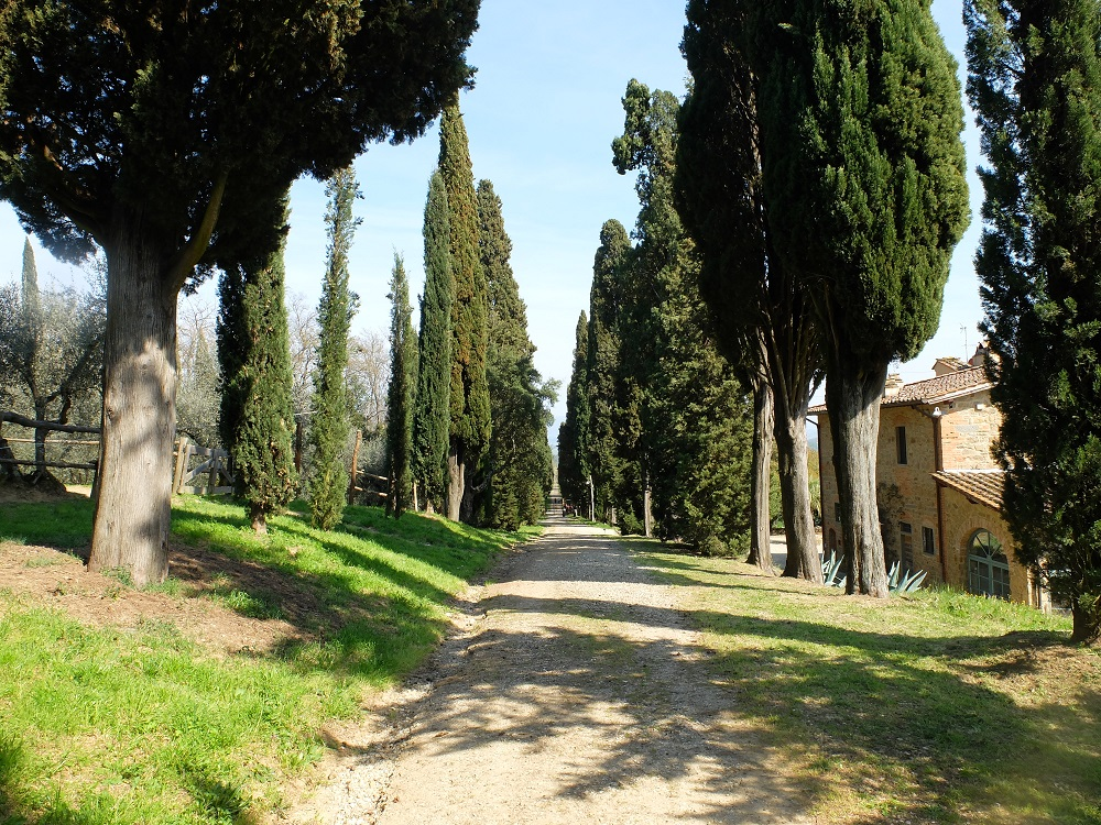 Florence Tuscany: 7 Areas Of Tuscany That Deserve A Closer Look
