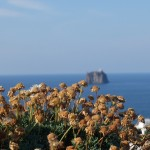 Aeolian Islands: The First And Last Time I Will Take A Mini Cruise (Maybe)