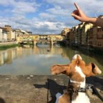 November Events in Florence, Italy