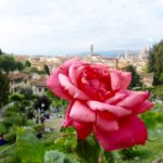 Enjoying May in Florence, A Few Of My Personal Suggestions