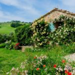 A Tuscan Weekend Escape Near Montepulciano
