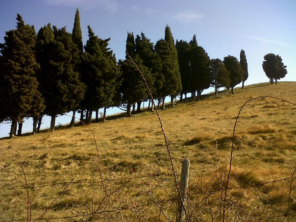 Views from the landscapes of monte giovi