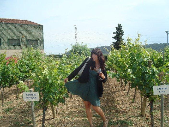 Beautiful Vineyard in Florence