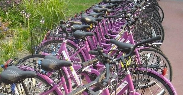 The purple bikes to travel along florence