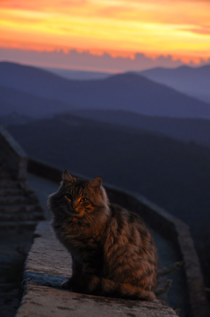 sticciano_sunset