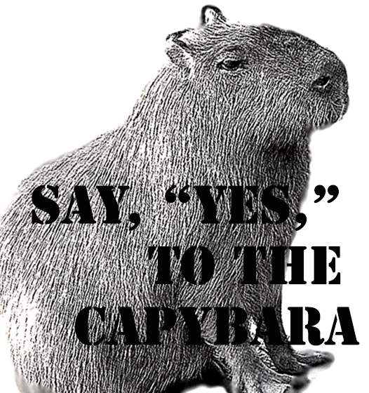 capybarashirtblack