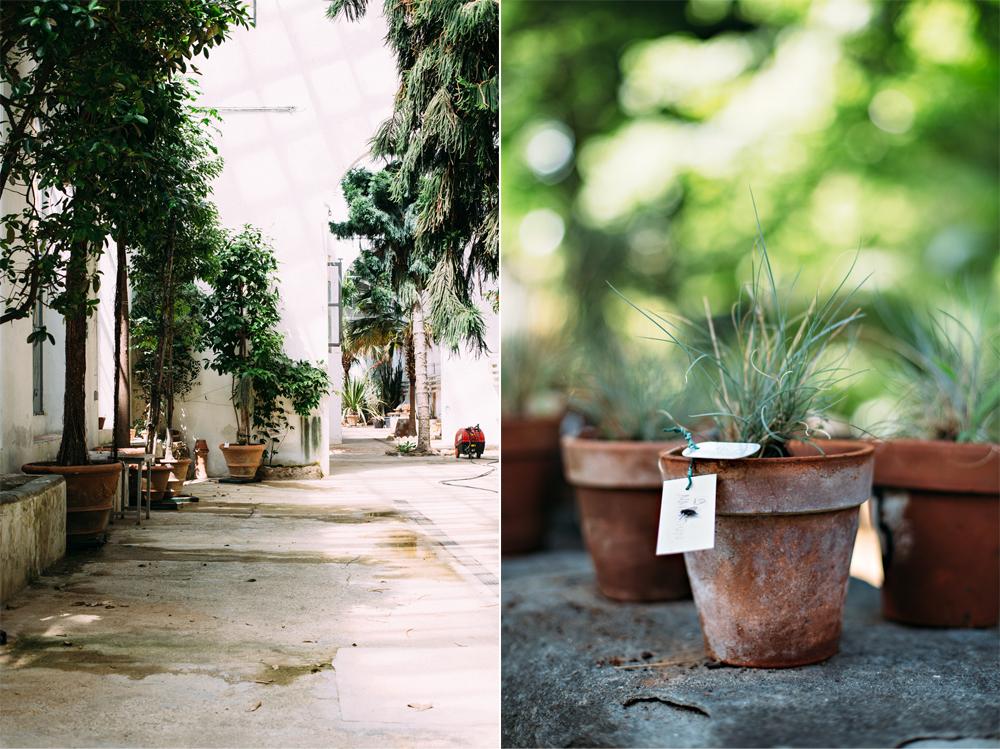 Botanical Garden Florence -® Birgitte Br+©ndsted