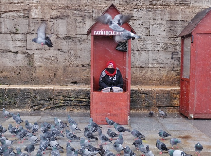 Woman selling bird grain to tourists