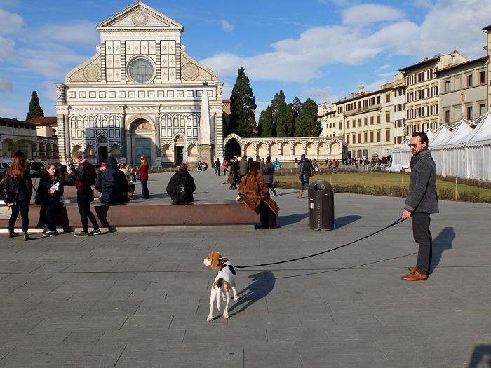Santa Maria Novella has been revamped!